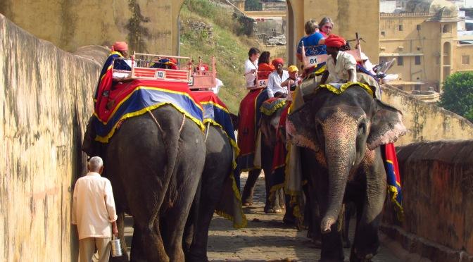 Rajasthan – 10 Days Trip