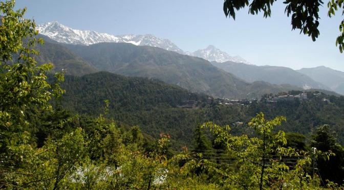 Dharamsala – McLeodganj – Bir Billing